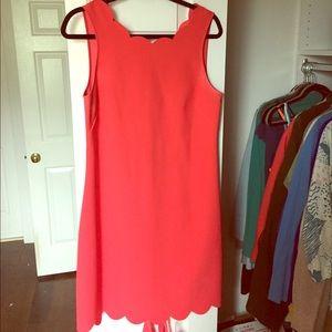 Gorgeous J crew scallop dress